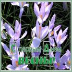 Картинка чудесная открытка с первым днем весны