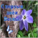 Картинка интересная открытка с первым днем весны
