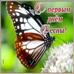 Картинка картинка первый день весны с бабочкой