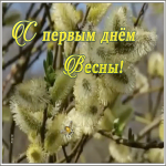 Открытка необычная открытка с первым днем весны
