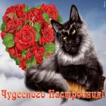 Картинка открытка хорошего настроения с котиком