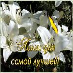 Открытка открытка лилии для самой лучшей