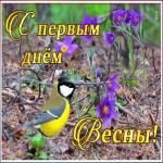 Открытка открытка первый день весны с птичкой