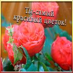 Картинка открытка подруге с надписью
