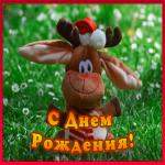 Картинка открытка с днем рождения с игрушкой