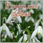 Картинка открытка с первым днем весны с подснежниками