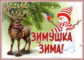 Открытка чудесная открытка с зимой