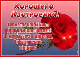 Картинка картинка прекрасного настроения с розой