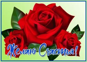 Картинка картинка с розами