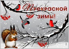 Открытка картинка зимняя сказка