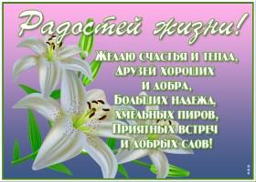 Картинка новая открытка с лилиями
