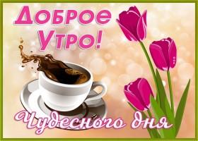 Открытка открытка доброе утро с тюльпанами