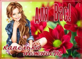Картинка открытка хризантемы для вас