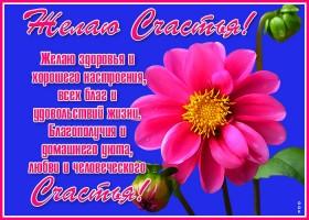 Открытка открытка цветы счастья