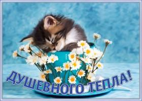 Картинка открытка весеннего тепла