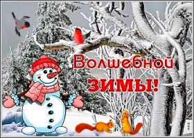 Картинка открытка зима-волшебница