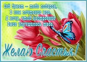 Открытка прикольная открытка с тюльпанами