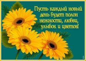 Картинка советская открытка с цветами