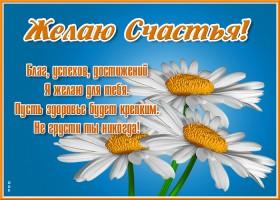 Картинка стильная открытка с цветами