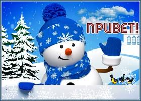 Картинка забавная зимняя открытка привет